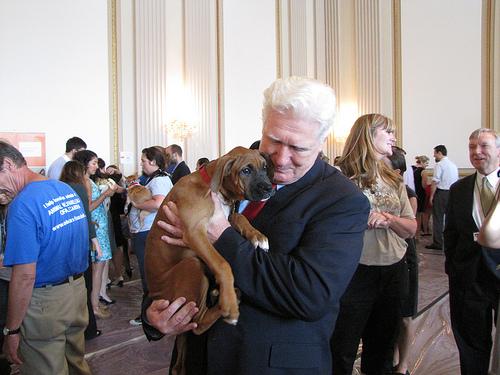 Moran Introduces Resolution Opposing Inhumane Euthanasia in Animal Shelters | Congressman Jim Moran