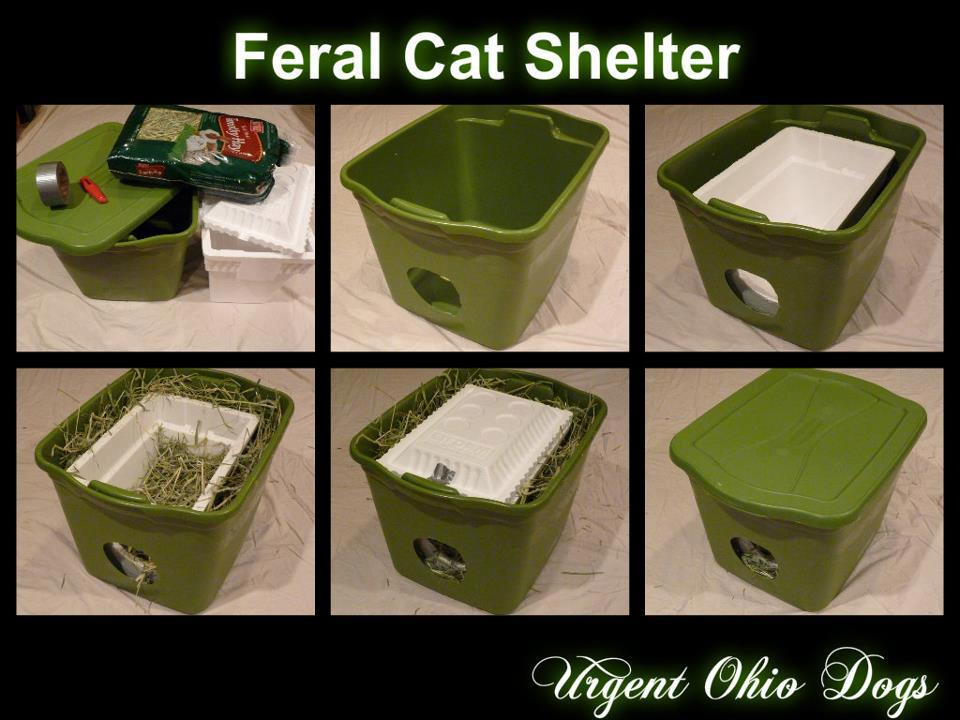 Homemade Outdoor Feral Cat Shelter