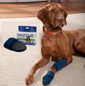 Healers Medical Wraps for Dogs