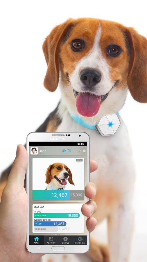 Dogtra StarWalk iQ Pet Activity Monitor