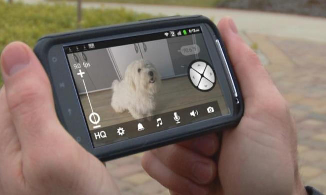 Motorola Scout1 Pet Video Monitor System