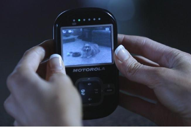 Motorola Scout 600 Indoor-Pet-Monitor-Infrared Night Vision