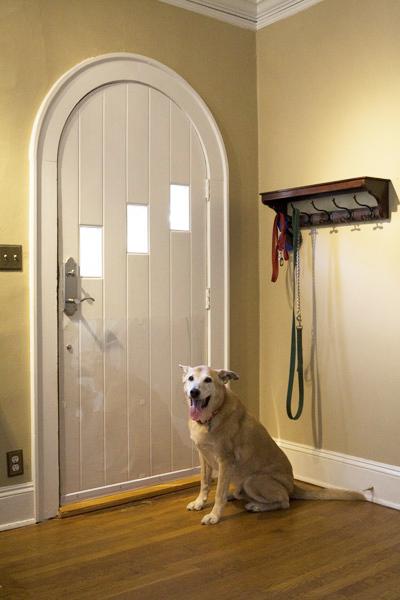 Cardinal Door Shield