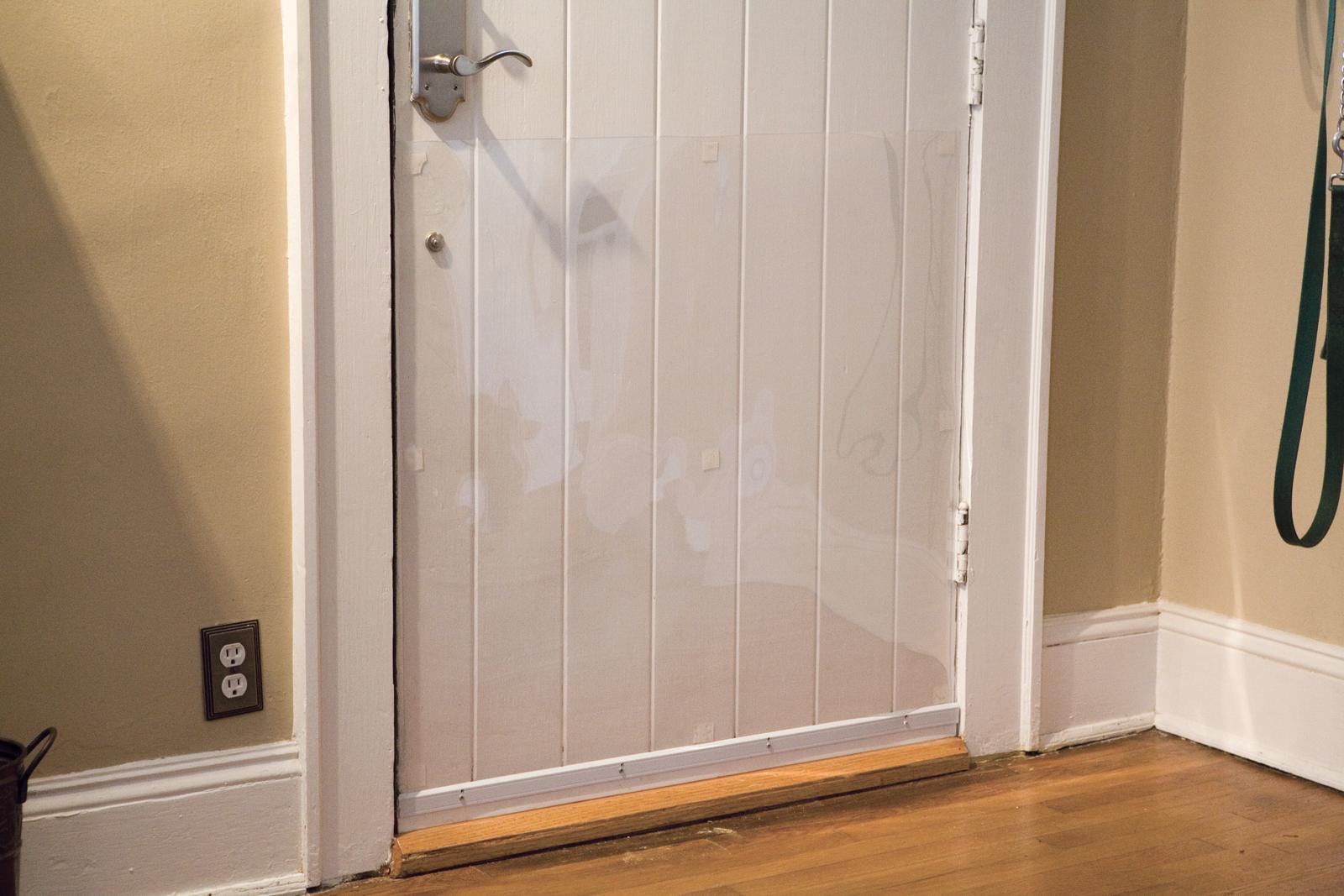 Cardinal Door Shield DRS & Cardinal Door Shield | ShopForPuppy Pezcame.Com