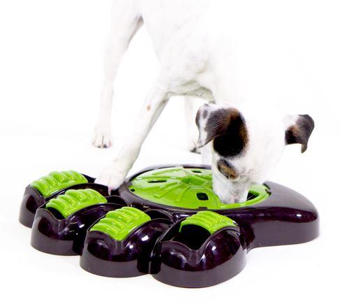 AiKiou Interactive Dog Feeder