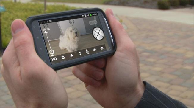 Motorola Scout66 WiFi Pet Monitor