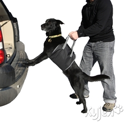 Outward Hound Up and Out Lift Harness for Dogs