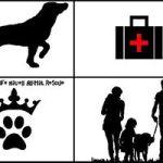 Queenie's Safe Haven Animal Rescue