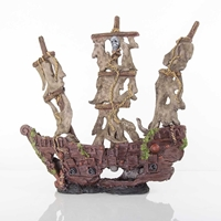 BioBubble Large Mystery Pirate Ship