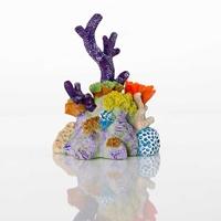 BioBubble Small Pacific Reef